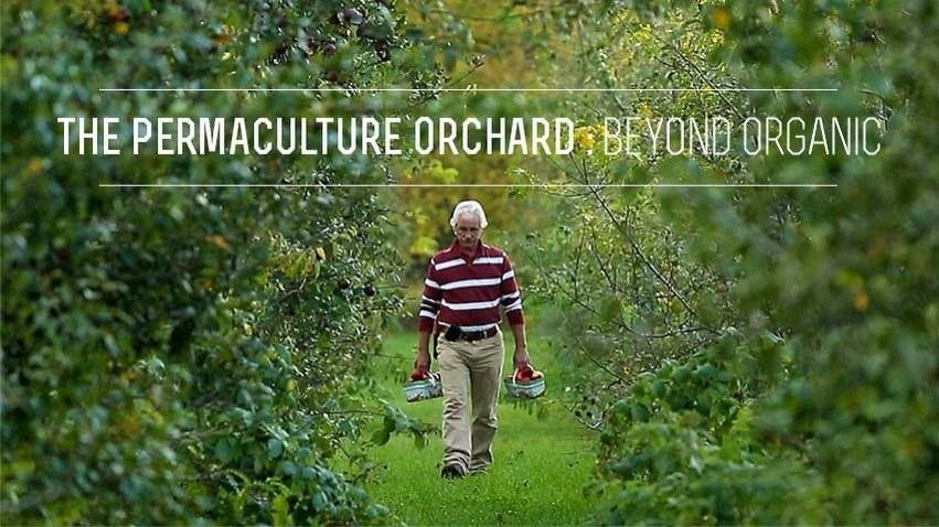 Miracle Orchard Workshop